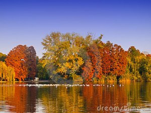 colorful-autumn-trees-lake-23247662